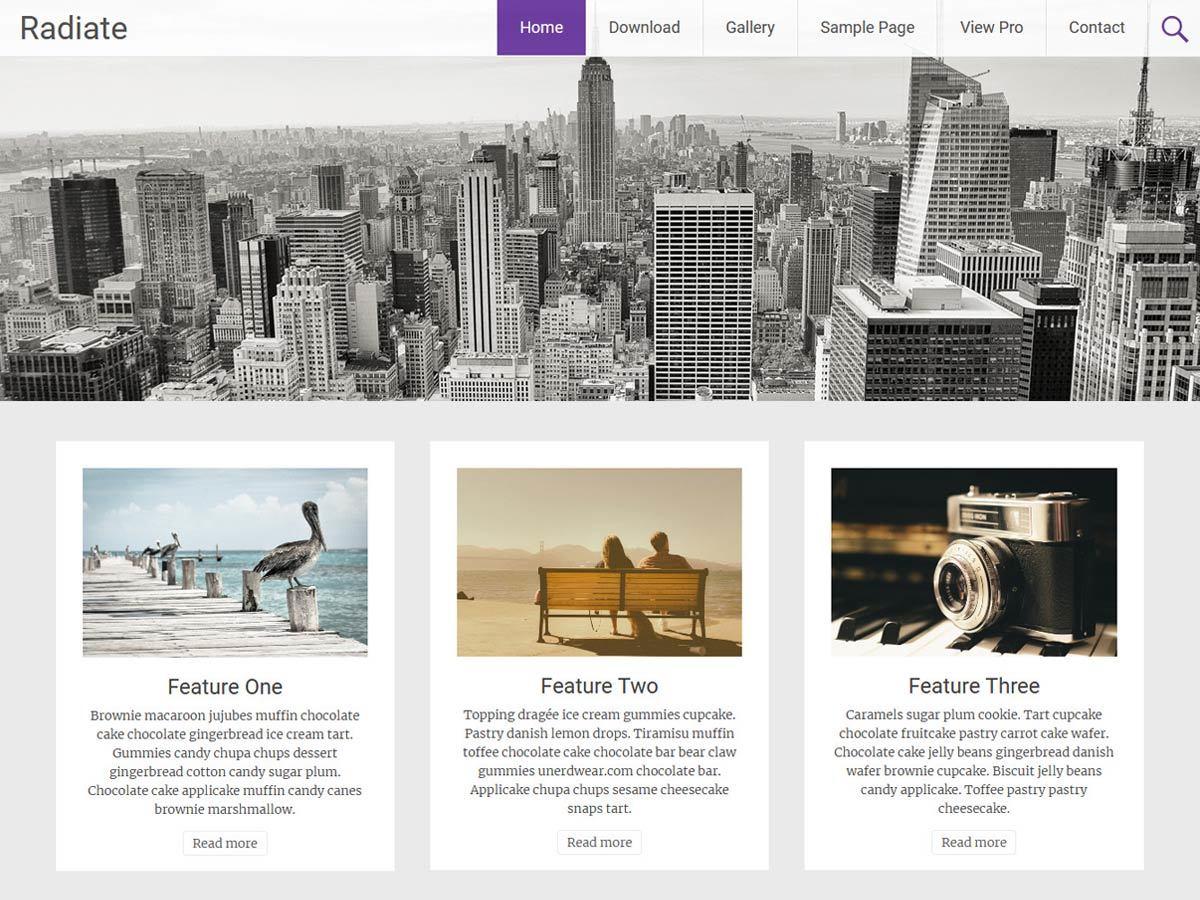 Radiate best free WordPress theme