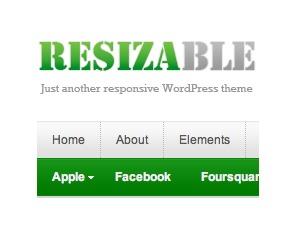 Resizable best WordPress theme