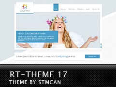 RT-Theme 17 WordPress theme design