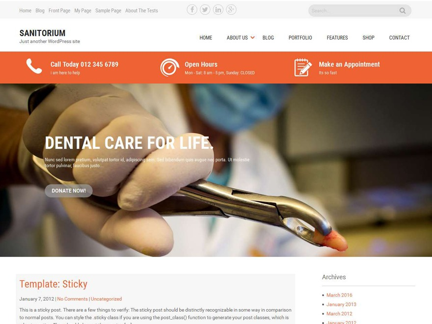 Sanitorium WordPress theme image