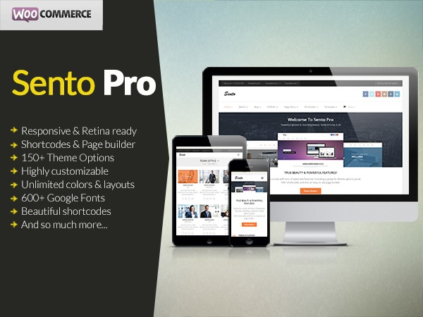 Sento Pro business WordPress theme