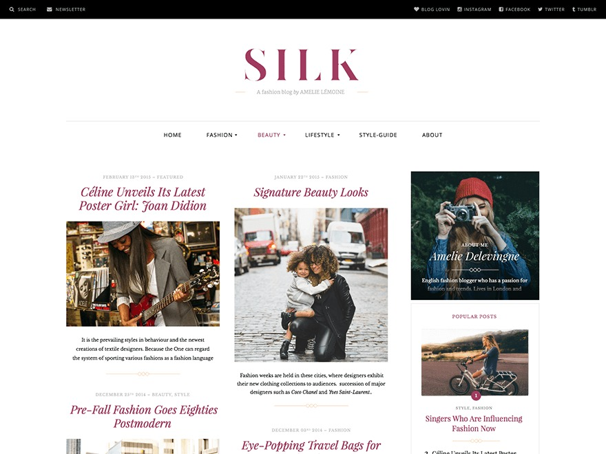 Silk Lite template WordPress free
