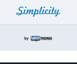 Simplicity best WordPress template