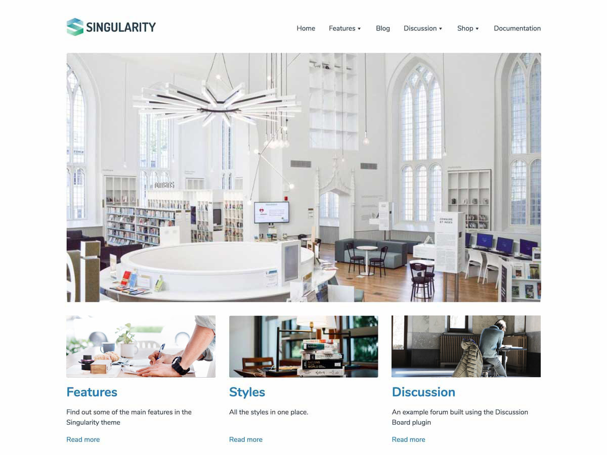 Singularity best free WordPress theme