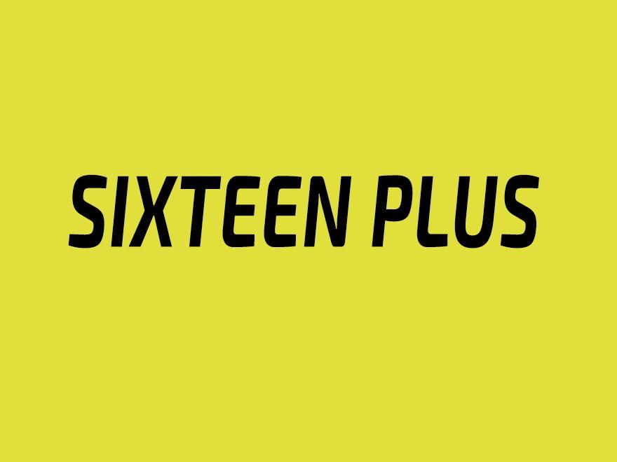 Sixteen Plus WordPress blog theme