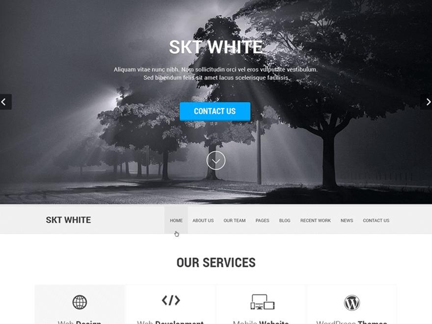 SKT White best WooCommerce theme