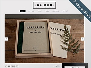 Slider Responsive WordPress Theme WordPress template