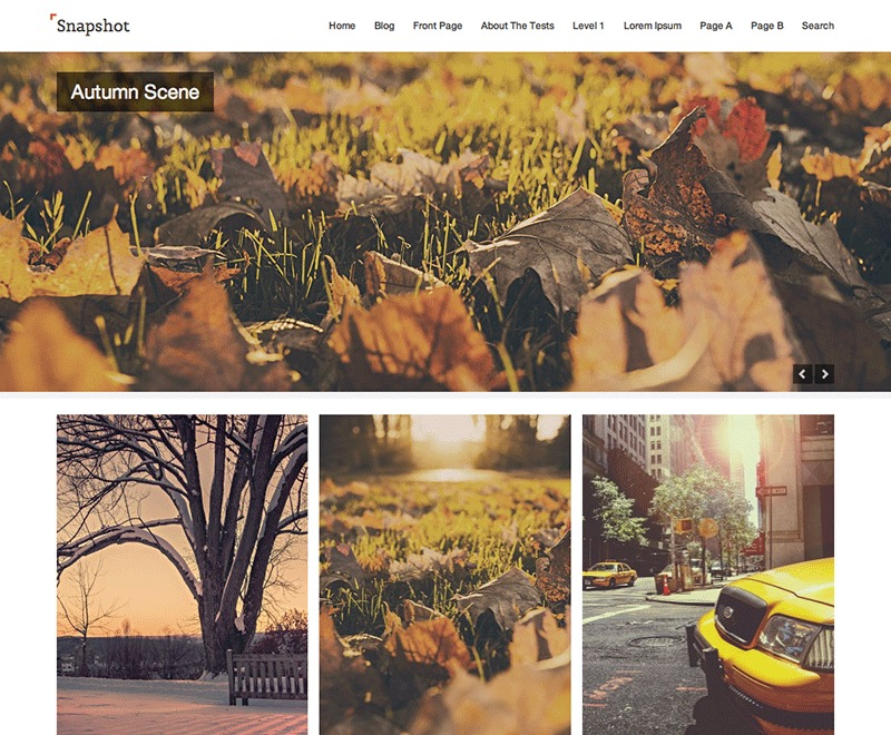 Snapshot WordPress theme download