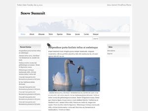 Snow Summit WordPress blog template