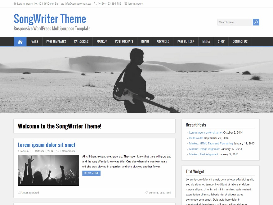SongWriter WordPress shopping theme
