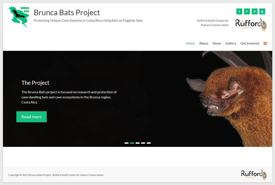 Spacious Child premium WordPress theme