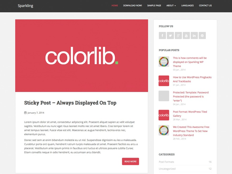 Sparkling free WordPress theme