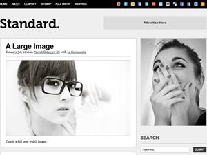Standard WordPress blog template