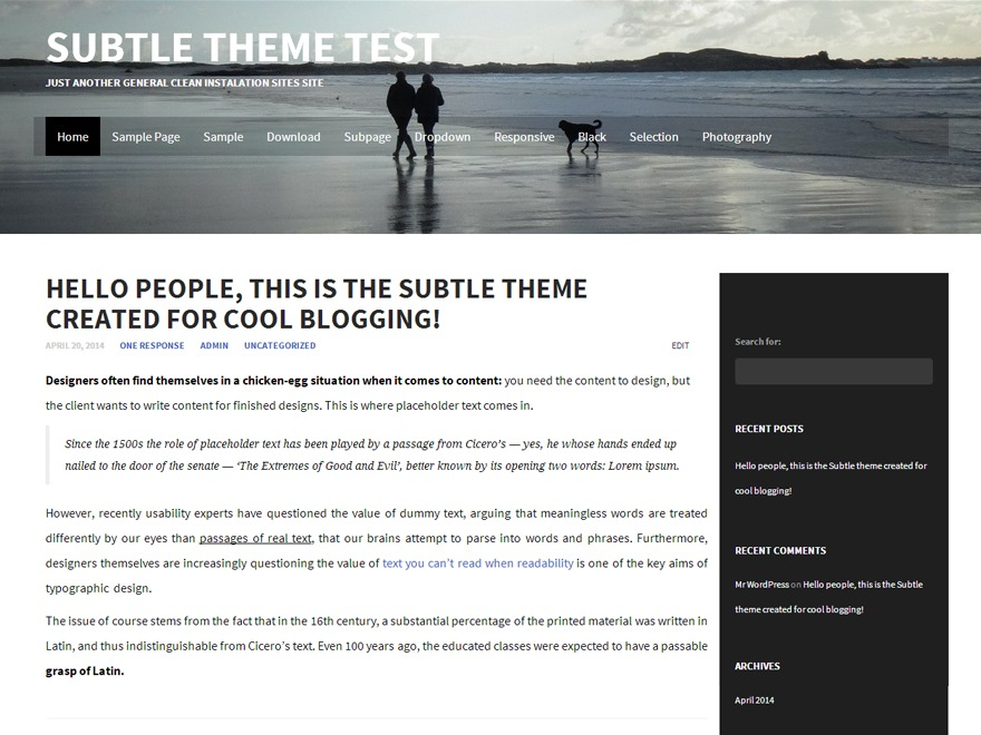 Subtle WordPress blog template