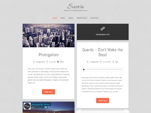 Sueva best WordPress theme