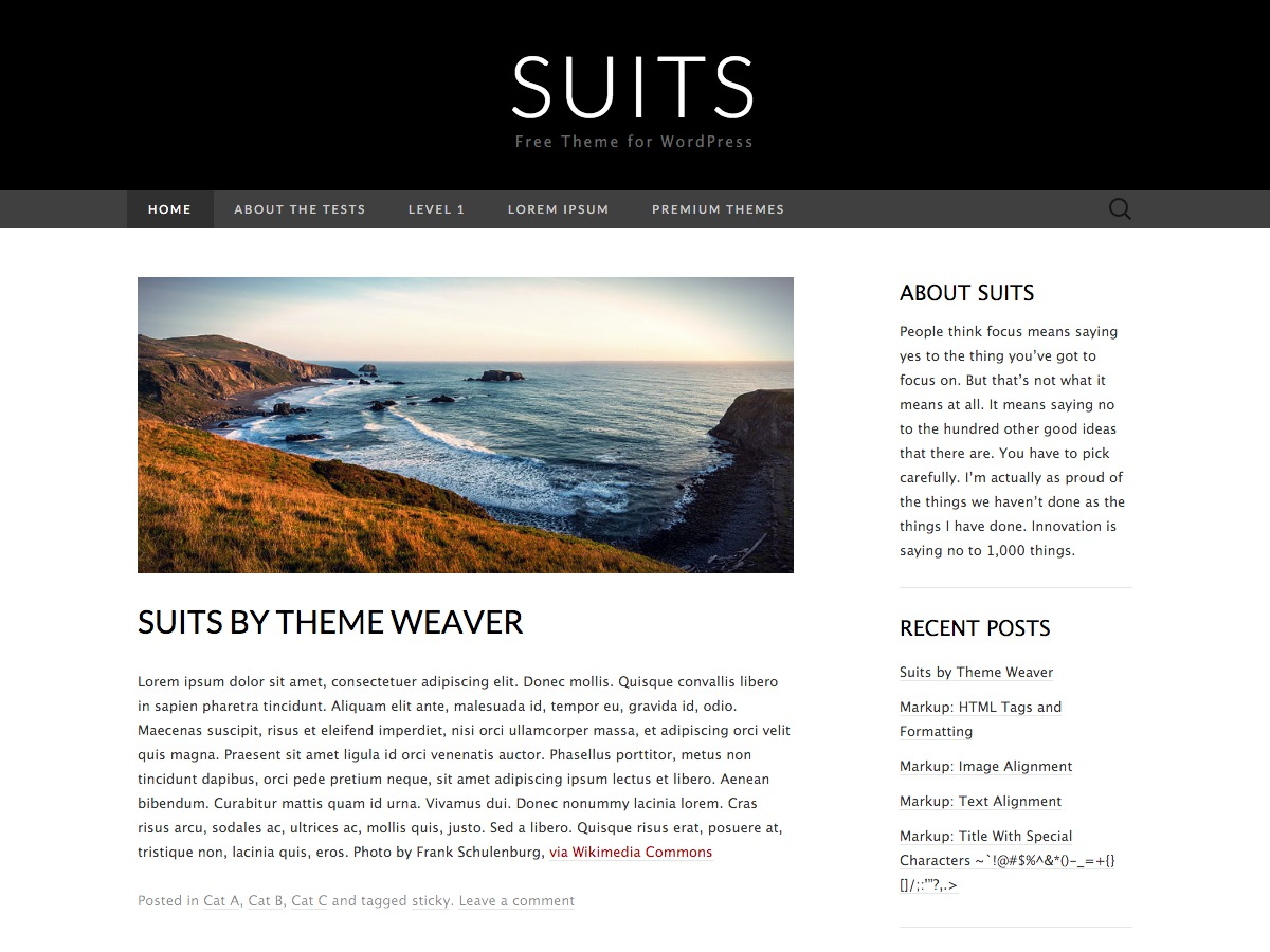 Suits best free WordPress theme