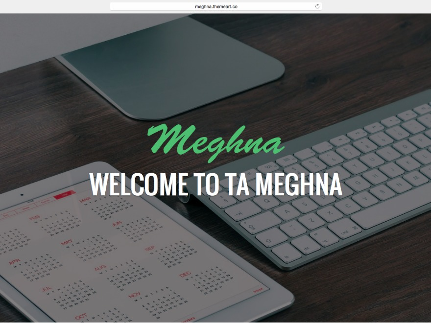 TA Meghna business WordPress theme