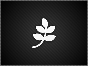 Theme WordPress PageLines Framework