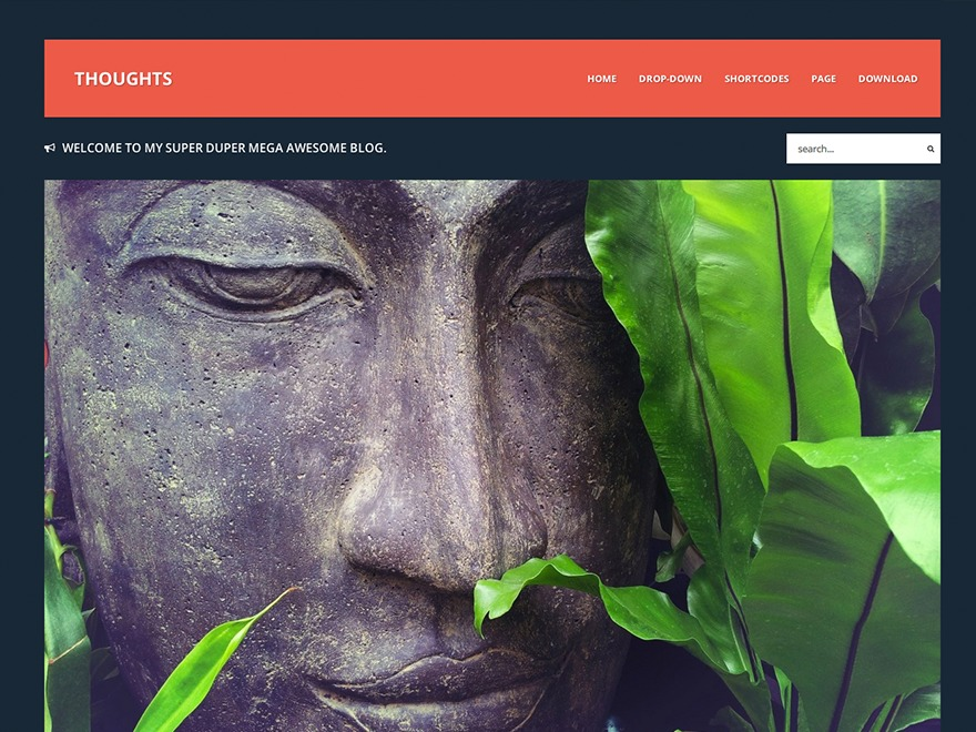 Thoughts best WordPress theme