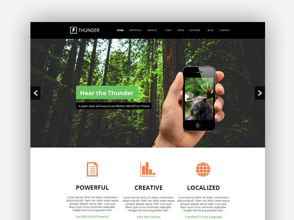 Thunder WordPress theme design