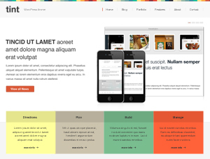 TinT theme WordPress