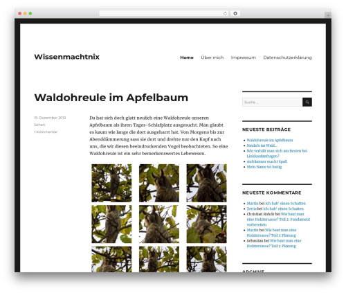 Twenty Sixteen WordPress website template - wissenmachtnix.de