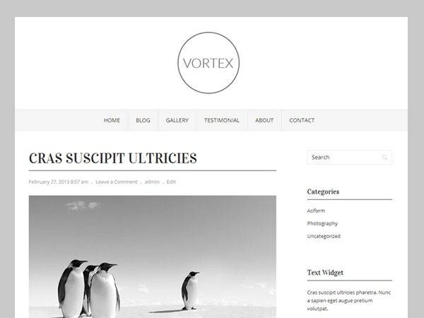 Vortex WordPress magazine theme