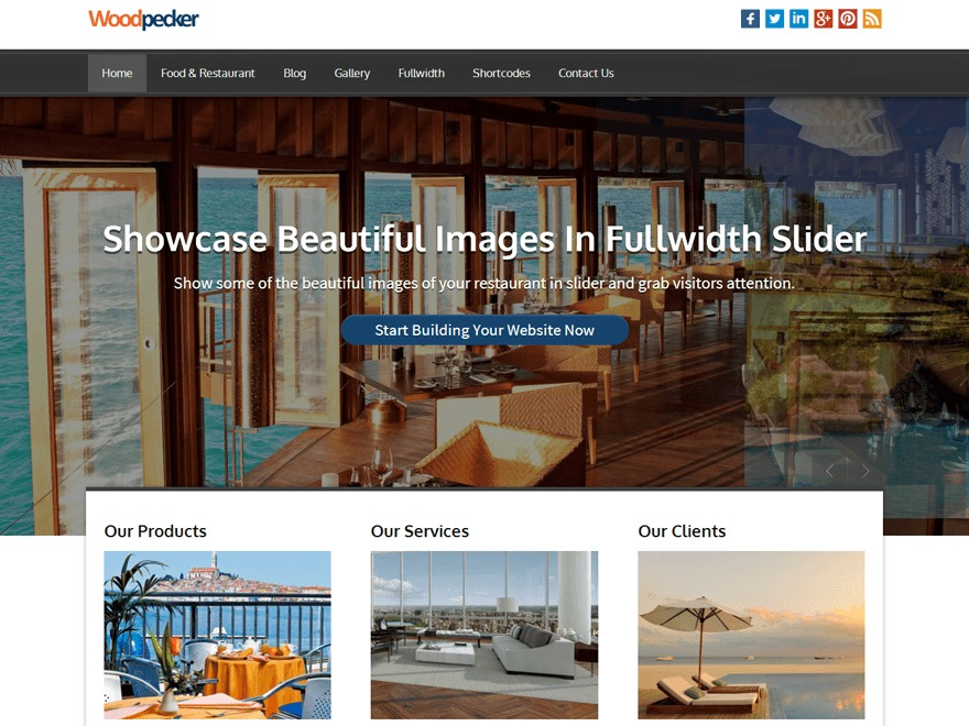 Woodpecker Pro Responsive Theme WordPress template for photographers