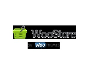 WooStore WordPress store theme