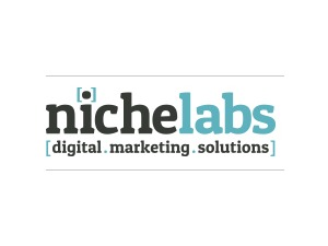 WordPress template NicheLabs Custom Theme