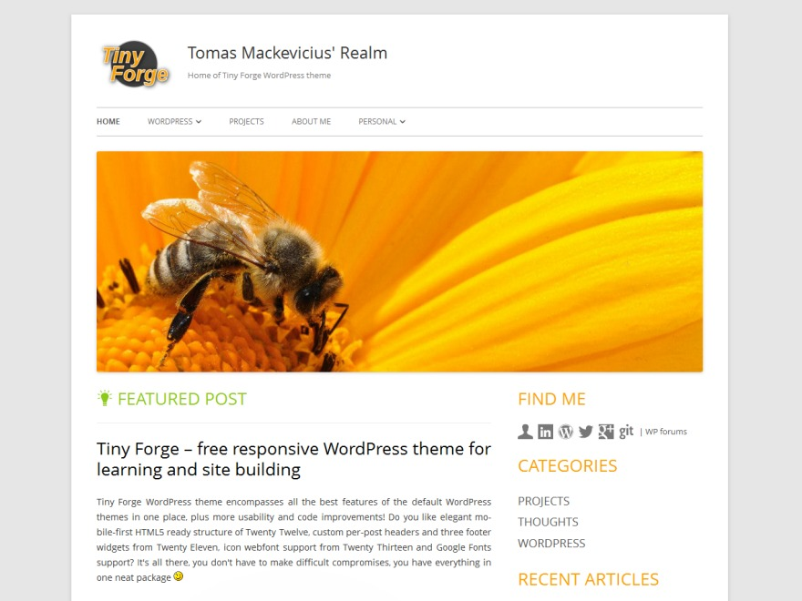 WordPress template Tiny Forge