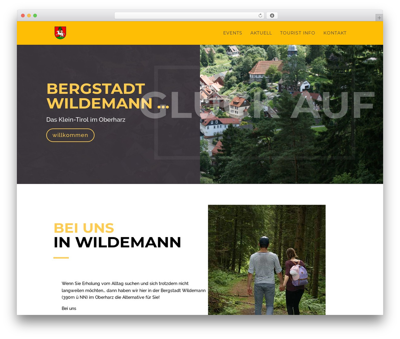 WordPress theme Divi - wildemann.de