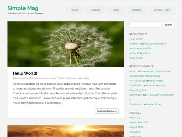 WordPress theme Simple Mag