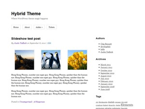 WordPress website template Hybrid
