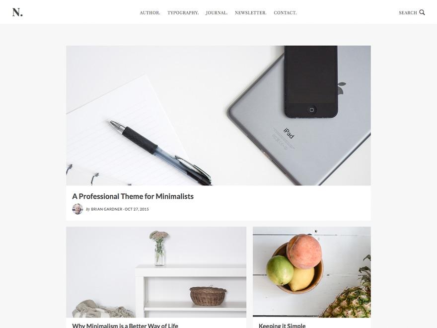 WordPress website template No Sidebar Pro