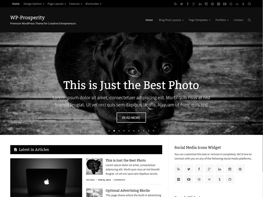 WP-Prosperity WordPress page template