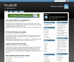 WP template StudioPress
