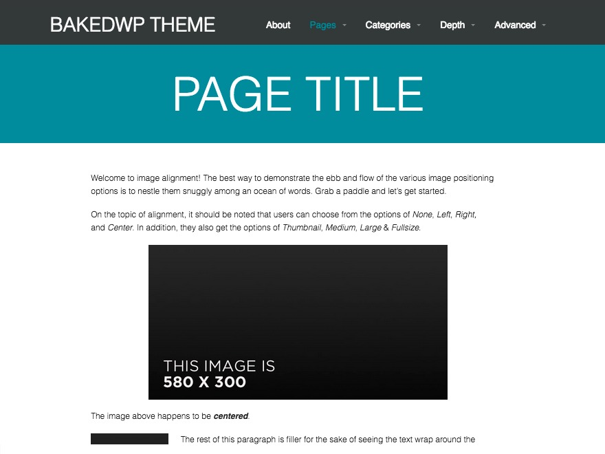 BakedWP WP template