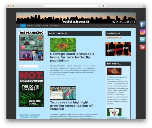 Best WordPress template Expound - wildaboutit.com