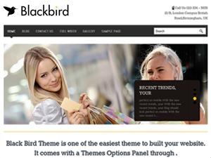 BlackBird Responsive Theme best WordPress gallery