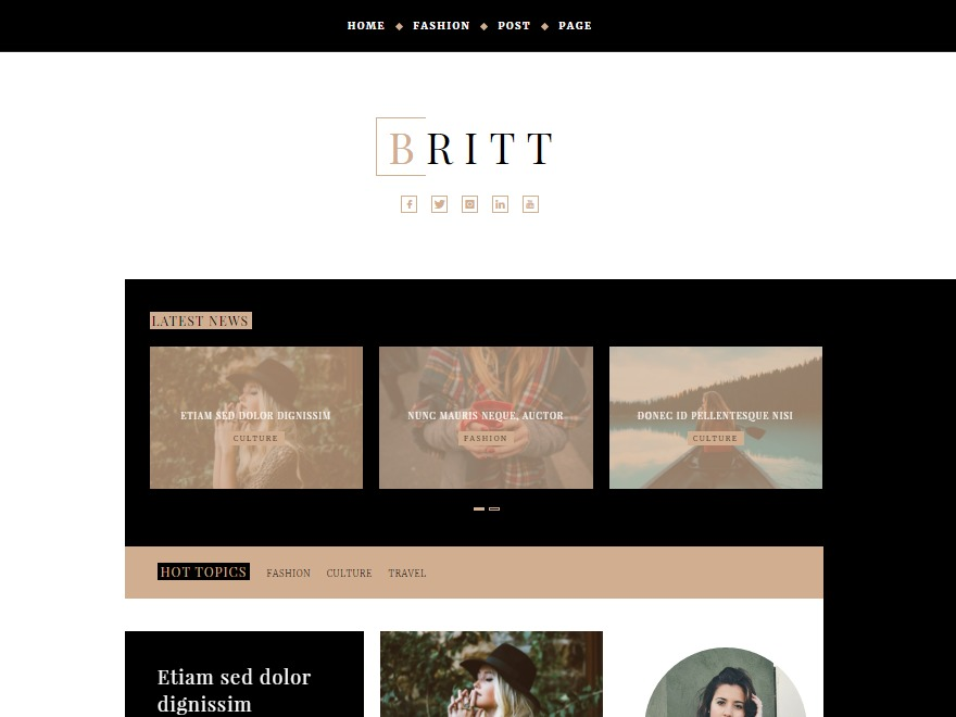 Britt WordPress template free download