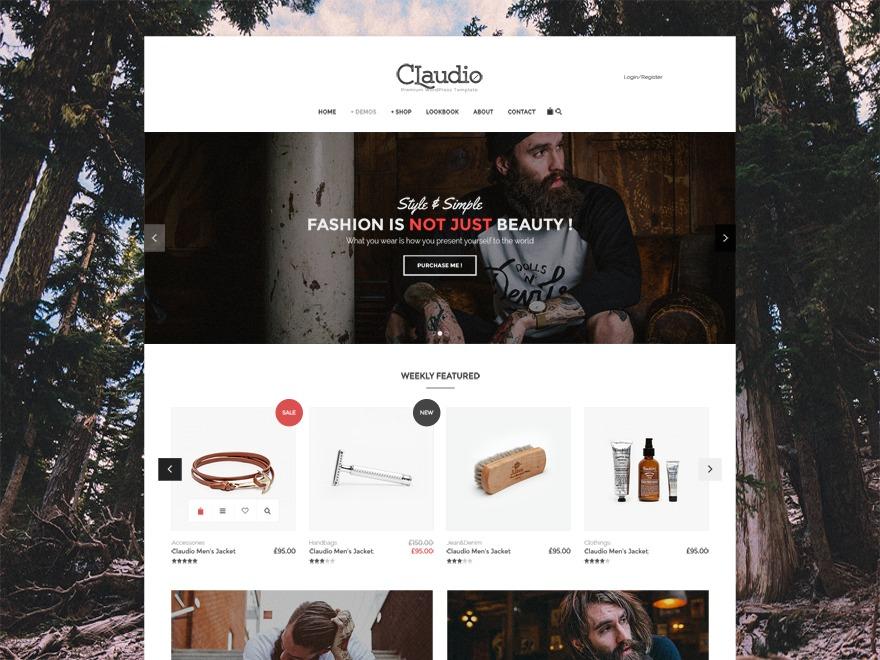 Claudio WordPress ecommerce theme