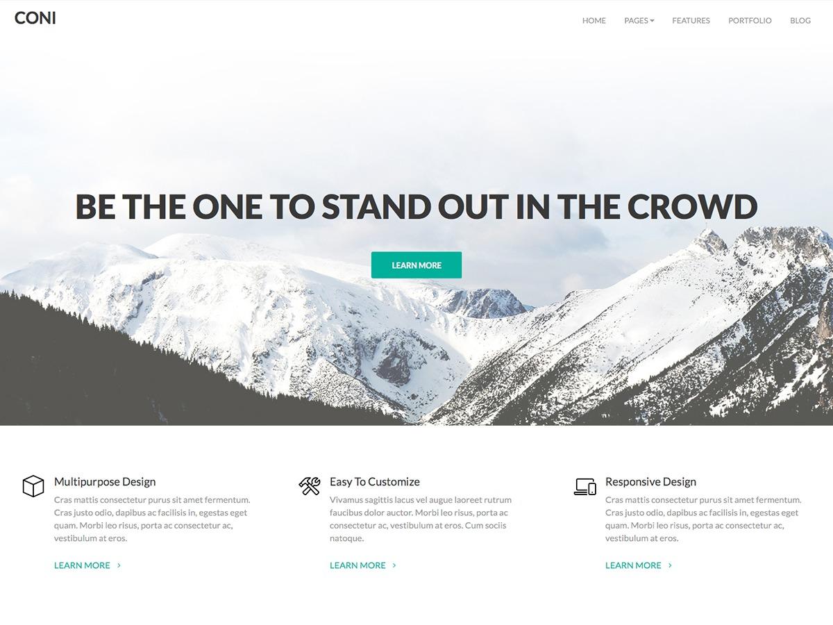 Coni Pro WordPress gallery theme