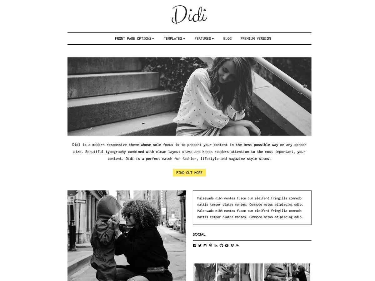 Didi Lite theme free download