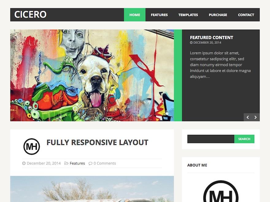MH Cicero Child Theme WordPress theme by MH Themes
