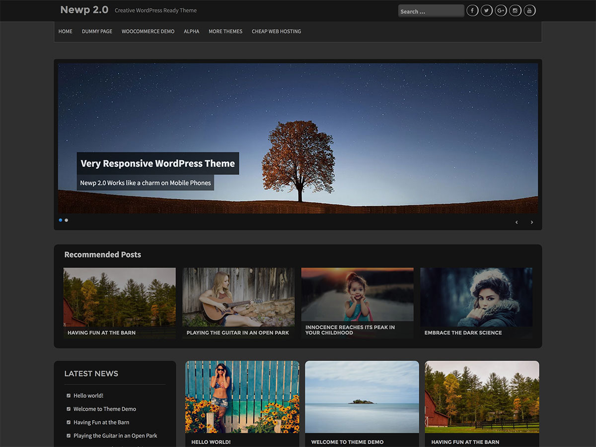Newp free website theme