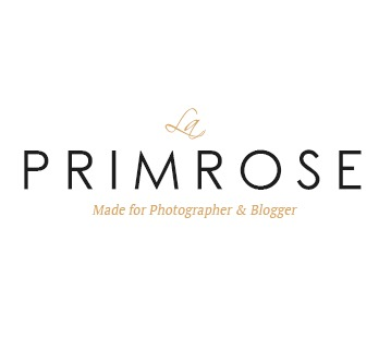 Primrose WordPress blog theme