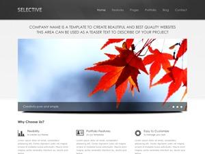 Selective best WordPress magazine theme