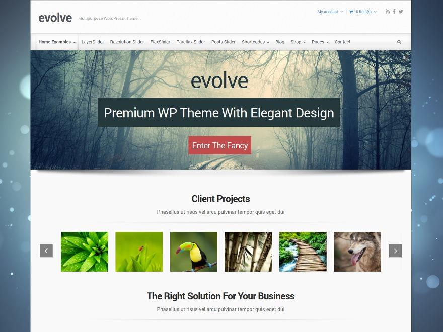 Theme WordPress evolve