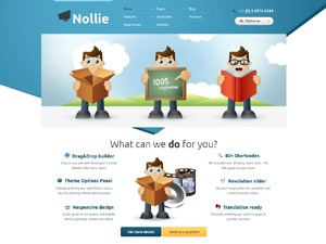 Theme WordPress Nollie